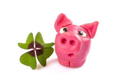 green shamrock with lucky pig sign for happiness isolated on white background Reklamní fotografie - 123108339