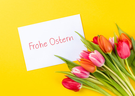 colorful tulips on a yellow background with white paper and german text frohe ostern, in english happy easter