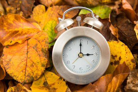Winter time change clock with leaves
