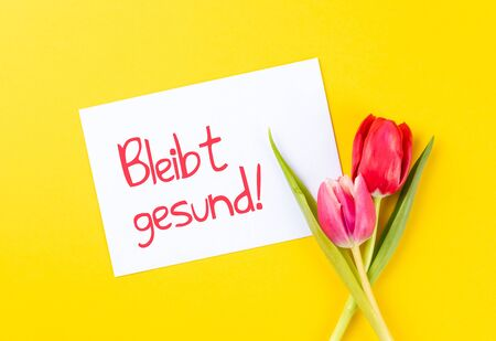 colorful tulips on a yellow background and german text bleibt gesund, in english stay healthy
