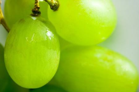 closeup of green hanepoot grapes Stock Photo - 4386756