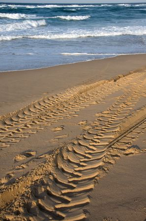 damaging: vehicle tracks on beach damaging the environment