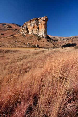 brandwag sandstone massive mountain  landmark in Golden Gate national park in south africa with winter grass in foreground Stock Photo - 7826245