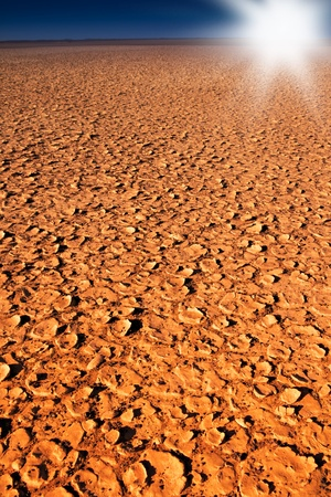 dry cracked dirt surface of verneukpan, a large saltpan in south africa Stock Photo - 9040559