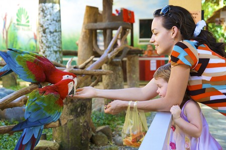 Mum and daughter feed a parrot in park of birds