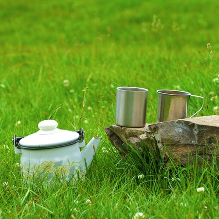 Teapot with glasses standing on a grass with a stone