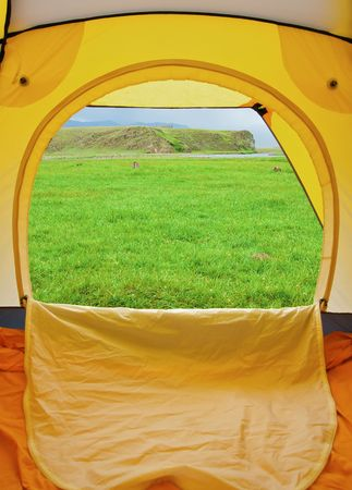 Kind from tent on lawn with green grass
