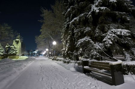 Bench and tree covered with snow. Night shot Stock Photo