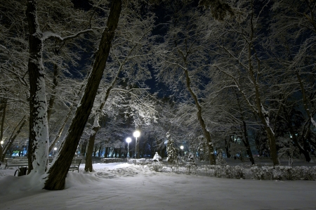 City park at night after a strong snowfall Stock Photo