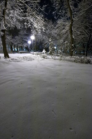 City park at night after a strong snowfall Stock Photo - 6392765