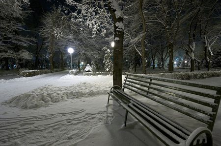 Bench and tree covered with snow. Night shot photo