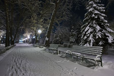 Bench and tree covered with snow. Night shot Stock Photo - 6392789