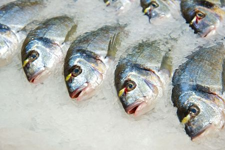 Fresh fish on ice decorated for sale at market  photo