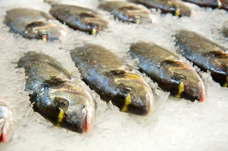 Fresh fish on ice decorated for sale at market Stock Photo - 6562202
