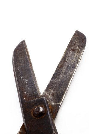 secateur: Old big iron isolated scissors
