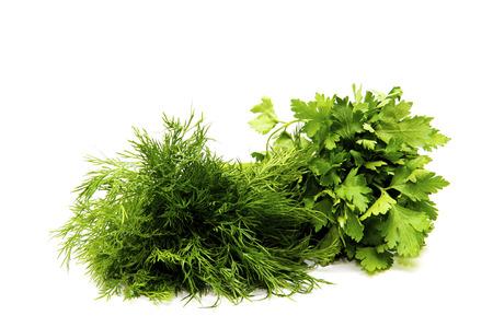 finocchio: pacco fresco di finocchio verde e finocchio