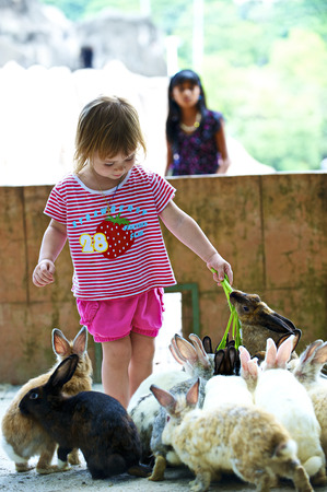 The little girl feeds rabbits with a grass photo