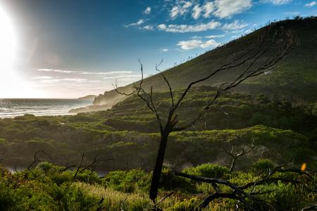 wilsons promontory: Wilsons Promontory National Park, Victoria in Australia