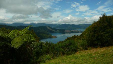 Bay of Many Coves, New Zealand