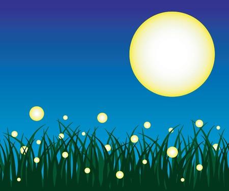 lightening: Firefly y hierba con fondo