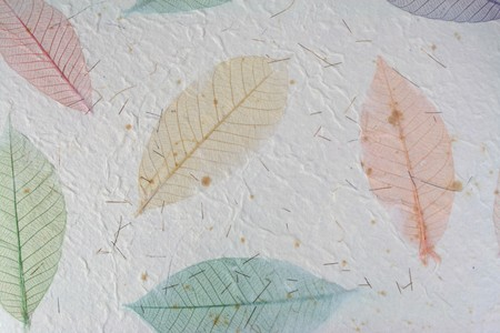 Paper with leaves for use as Natural Background 免版税图像