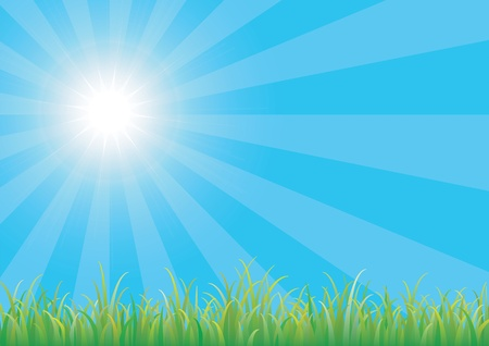 Blue sky with green grass Stock Vector - 9391527