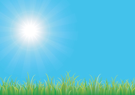 Blue sky with green grass Vector