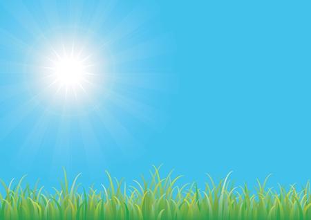 prato e cielo: Cielo blu con erba verde