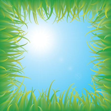 Blue sky with green grass Stock Vector - 9490451