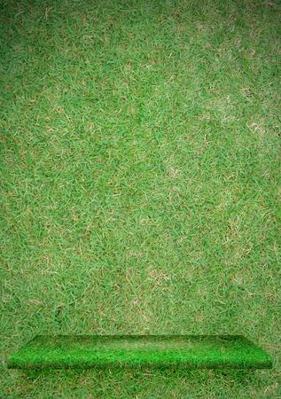 shelve: Grass green shelve Stock Photo