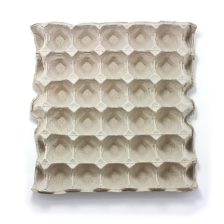 Egg carton tray on white Background 免版税图像