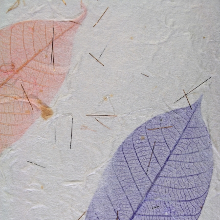 Paper with leaves for use as Natural Background Stock Photo - 18707473