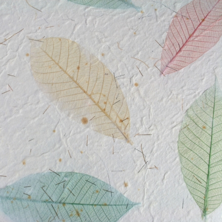 Paper with leaves for use as Natural Background Stock Photo - 18985882