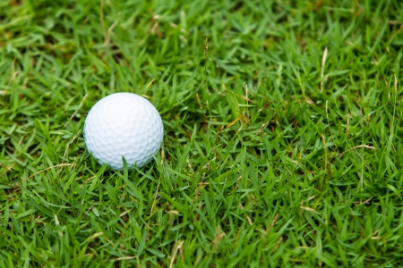 Golf ball on the green grass background photo