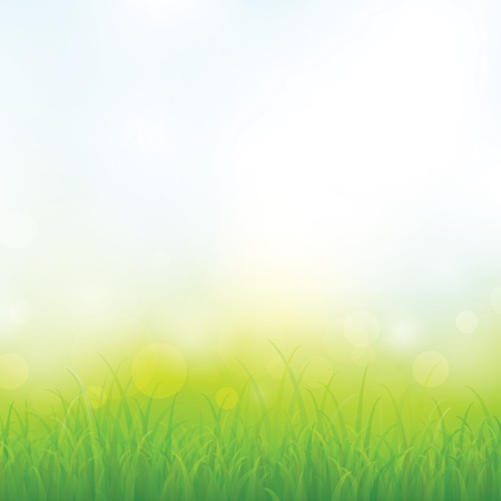 Green grass with bokeh for background Vector