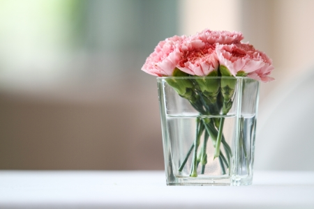 Bouquet of carnation flowers in glass vase 免版税图像