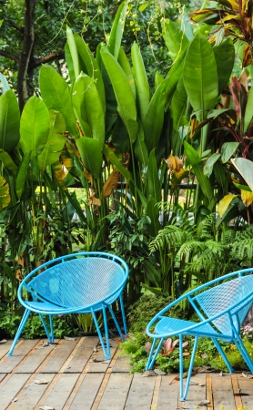 Blue chair with tree background in garden Stock Photo - 24659416