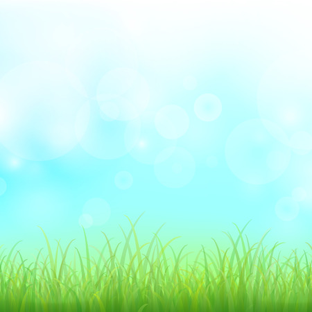Green grass with bokeh for background, Vector  Vector