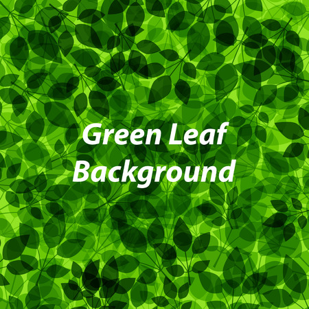 Abstract background with green leaf pattern, Vector Vector