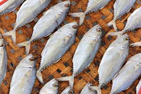 food preservation: Close-up dried fish under the sun,  food preservation Stock Photo