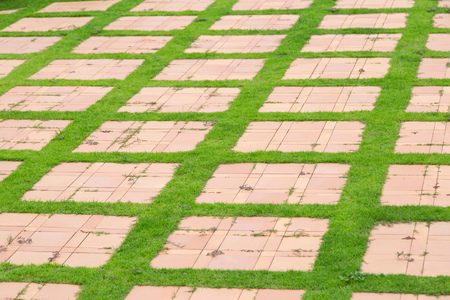 Green grass and stone walkway in park Imagens - 119288738