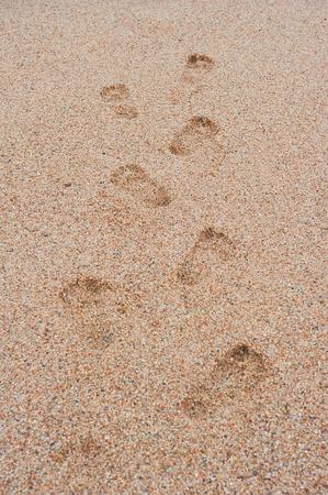 písek stopy vedoucí do moře rytmicky protahování Reklamní fotografie - 33048900