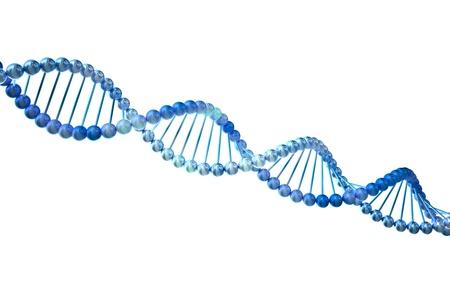 biotecnologia: ADN 3d aislado sobre fondo blanco