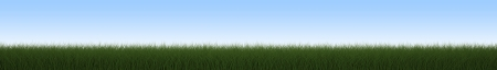 Green grass panorama on the sky background