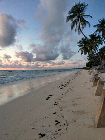 Romantic, extraordinary sunset in Jambiani on Zanzibar by the sea with horizon and coconut trees Banco de Imagens