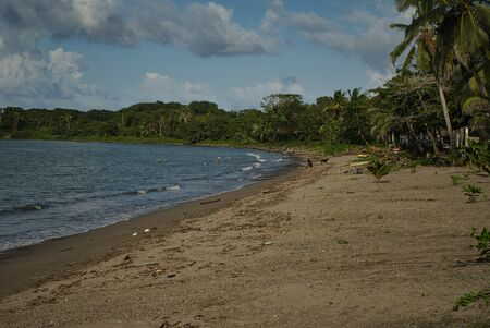 On the lonely beach on the Caribbean side in Panama with dark sand and coconut trees, wanderlust calls