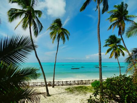 Dream setting Raffaello advertising, coconut trees and wanderlust on the white beach with turquoise sea on Zanzibar, fishing boats and horizon in the background