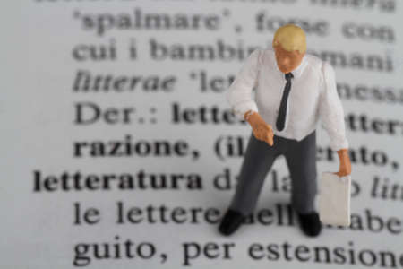 professor of Italian in miniature