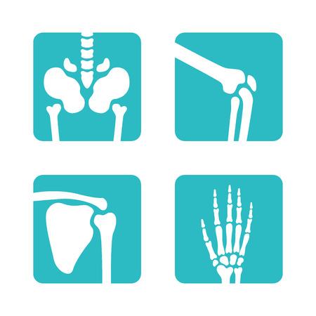 Conjunto de símbolos de huesos ortopédicos y esqueléticos. Vector pelvis, rodillas, escápula, iconos de mano. Botones de aplicaciones médicas