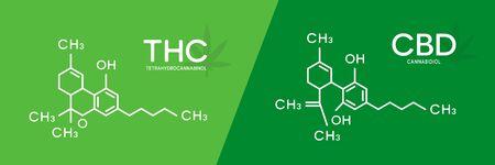 THC and CBD formula. Tetrahydrocannabinol and cannabidiol molecule structure.
